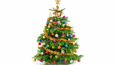 Strom splněných přání ve Westfield Chodov 1.12. – 16.12.